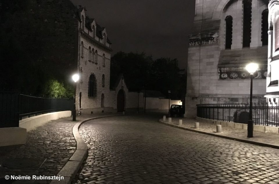 Picture of a street scene in Montmartre, Paris, featuring its looks at night. The only elements which are not in black and white on the picture are the discreet green leaves of an adjacent tree