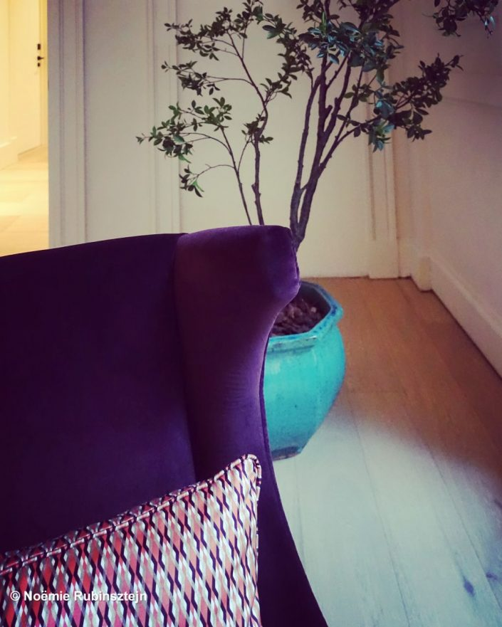 This photo was taken in a hotel in Antwerp, Belgium and showcasts a beautiful pink/purple pillow on a purple sofa. Behind the sofa stands the shy plant in a huge turquoise pot.
