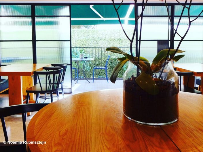 This photo was taken in Tel Aviv in one of its hotels and features a closeup on a plant on a wooden table, a balcony and its furniture.