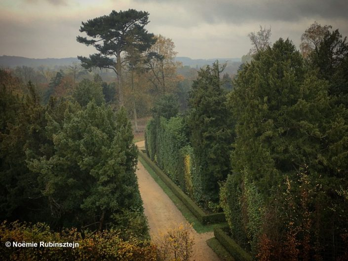 This photo was taken in the gardens of the Château de Versailles and features its trees, and one passage, reminding Cézanne's passages.