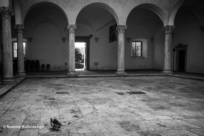 This photo was taken in Tuscany and features a bird in the courtyard of a hall in black and white. Pillars are surrounding the bird.