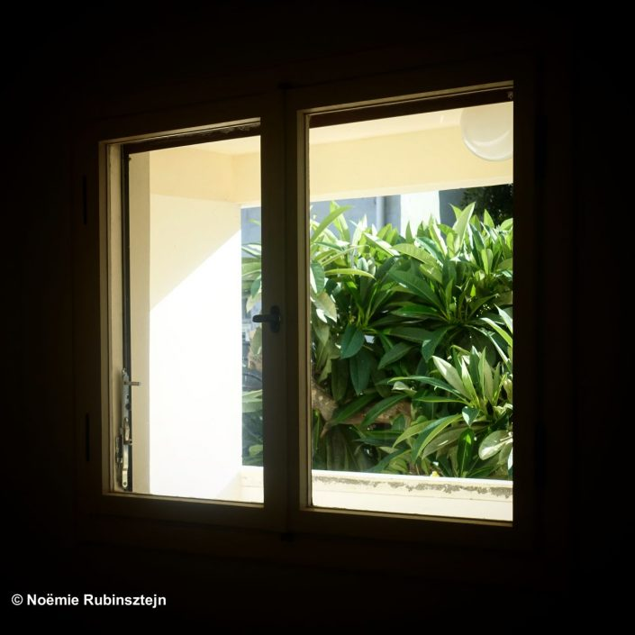 This photo was taken in Tel Aviv in the Liebling House and features the plants outside of the house peeking inside of the house.
